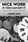 Nice Work If You Can Get It: Life and Labor in Precarious Times by Andrew Ross (Hardback, 2009)