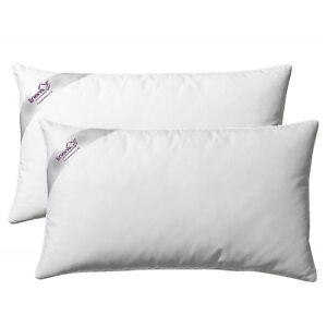 Special-Offer-Duck-Feather-And-Down-Pillows-Pair