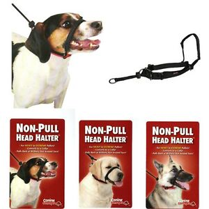Non-Pull-Dog-Puppy-Head-Halter-Black-M-L-XL-For-Heavy-to-Extreme-Pullers
