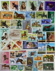HORSES-splendid-colourful-collection-of-300-different