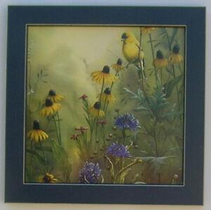 american goldfinch pictures birds framed bird picture print art 12x12 ebay. Black Bedroom Furniture Sets. Home Design Ideas