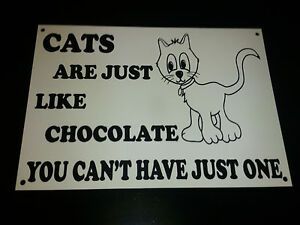Funny-Sign-CATS-LIKE-CHOCOLATE-CANT-HAVE-1-xmas-present-4-animal-lovers-A5