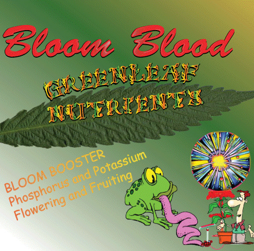 Bloom Blood Hydroponic Nutrient bud advanced