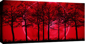 LARGE-RED-amp-BLACK-MODERN-LANDSCAPE-CANVAS-PICTURE-40-034