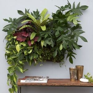 Hanging Wall Planter living wall planter vertical garden hanging wall planterwoolly
