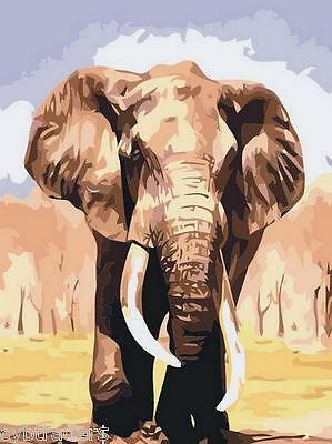 African Elelephants Paint By Number  Refrigerator / Tool  Box  Magnet