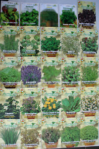 Herb-Seeds-28-VARIETIES-TO-CHOOSE-FROM-Everything-you-need-is-here-Top-Quality