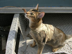 CAT-WALKING-LEASH-TRAINING-JACKET-HARNESS-VEST-NEW-FABRICS
