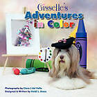 Gisselle's Adventures in Color by Heidi L Ames (Paperback / softback, 2010)