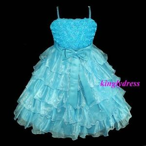 NEW-Flower-Girl-Pageant-Wedding-Party-Bridesmaid-Dress-Blue-Wears-Size-3-8-Y435