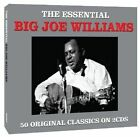 Essential by Big Joe Williams (CD, Dec-2012, 2 Discs, Not Now Music)