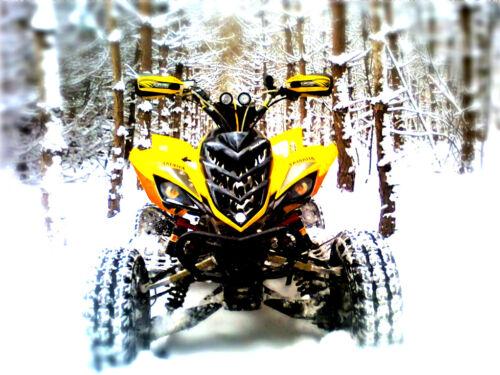 Quad-Teile Auspuffanlagen & -teile Yamaha 660 Raptor Reaper Augen ...