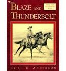 Blaze & the Thunderbolt by ANDERSON (Paperback, 1993)
