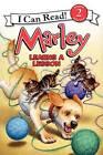 Marley Learns a Lesson by John Grogan (Hardback, 2013)