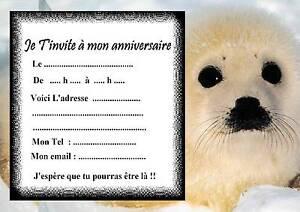 5 cartes invitation anniversaire phoque 01 d'autres cartes en boutique animaux   eBay