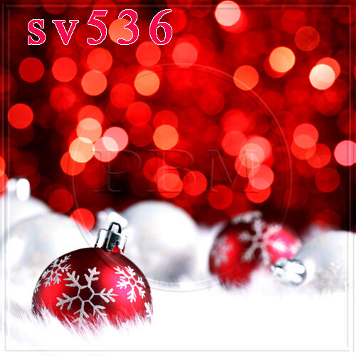 XMAS 10w x20h FT CP (COMPUTER PRINTED) PHOTO SCENIC BACKGROUND BACKDROP SV536