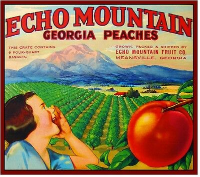 Meansville Georgia Peaches Echo Mountain Peach Fruit Crate Label Art Print