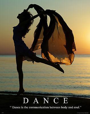 Ballet Dance Motivational Poster Art Print Shoes Flats Tutu Leotard Skirt MVP255