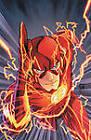 Flash: v. 1: Move Forward by Francis Manapul, Brian Buccellato (Hardback, 2012)