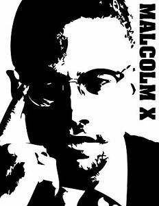 MALCOLM-X-BEAUTIFUL-POSTER-PRINT-LOOKS-AWESOME-FRAMED