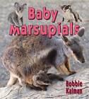 Baby Marsupials by Bobbie Kalman (Paperback, 2012)