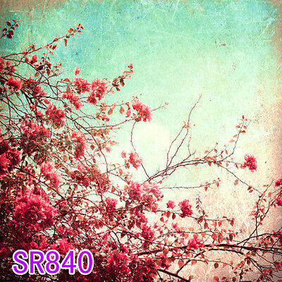 10x10 FT CP (COMPUTER PRINTED) PHOTO SCENIC BACKGROUND BACKDROP SR840