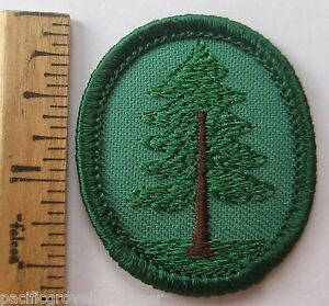 retired oval girl scout pine tree troop crest forest badge