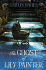 The Ghost of Lily Painter by Caitlin Davies (Paperback, 2012)