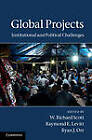 Global Projects: Institutional and Political Challenges by Cambridge University Press (Hardback, 2011)