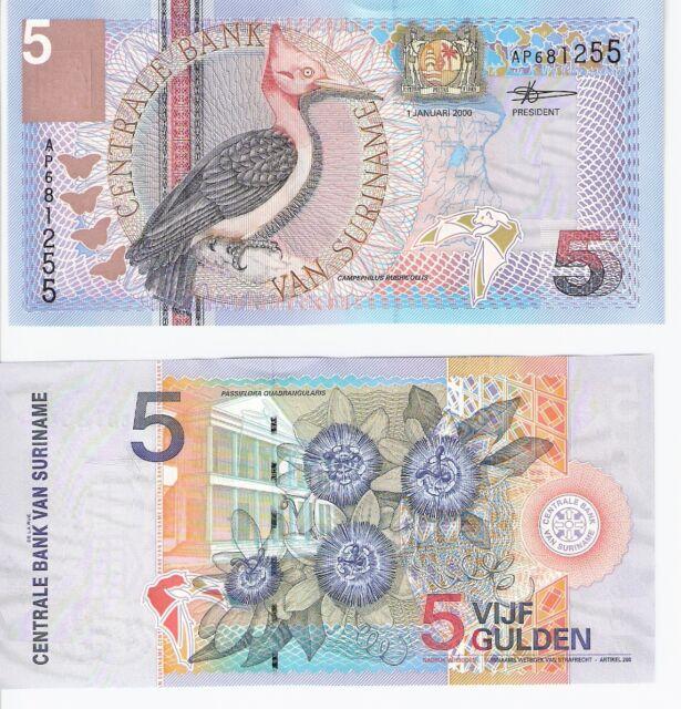 SURINAME 5 Gulden Banknote World Money South America Currency BILL p146 Bird