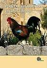 Poultry Production in Hot Climates by N.J. Daghir (Hardback, 2008)