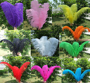 Wholesale-50PCS-Quality-Natural-OSTRICH-FEATHERS-10-12-039-inch-Color-Selection