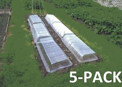 POLYTUNNEL COVER LIDS CLEAR, RIGID PLASTIC 5-PACK PROPAGATOR. GARDEN, GREENHOUSE