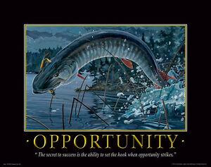 Muskie-Fishing-Motivational-Poster-Art-Vintage-Musky-Lures-Shimano-Rods-MVP92