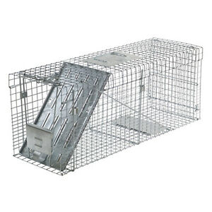 Raccoon-Trap-Havahart-1089-Collapsible-Live-Animal-Trap-Cats-Groundhog-Opossums