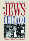 The Jews of Chicago: FROM SHTETL TO SUBURB by Irving Cutler (Paperback, 2008)