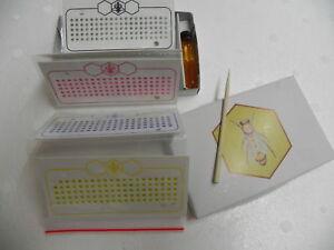 Opalith-Plaettchen-Garn-leuchtend-Zucht-Imker-Imkerei-bee-Zeichenplaettchen