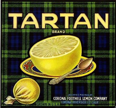 Corona Riverside Tartan Scottish Grapefruit Citrus Fruit Crate Label Art Print