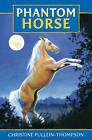 Phantom Horse by Christine Pullein-Thompson (Paperback, 2011)