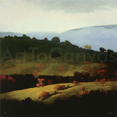 """Image 30""""x30"""" FOG BANK by MARCUS BOHNNE HAND NUMBERED #27/50 with SIGNATURE S/N"""