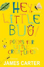 Hey Little Bug: Poems for Little Creatures by James Carter (Paperback, 2011)