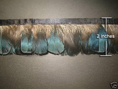 Lady Amherst Pheasant feather fringe natural blue color 1 yard trim