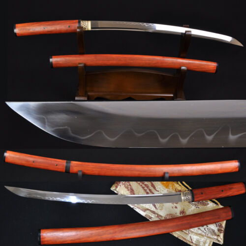JAPANESE SAMURAI SHIRASAYA SWORD WAKIZASHI Clay Tempered UNOKUBI-ZUKURI Blade