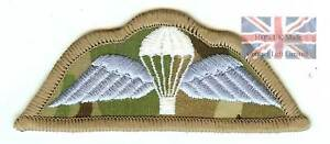 Colour-Official-Multicam-Hook-Sticky-Backed-Para-Wings-airborne