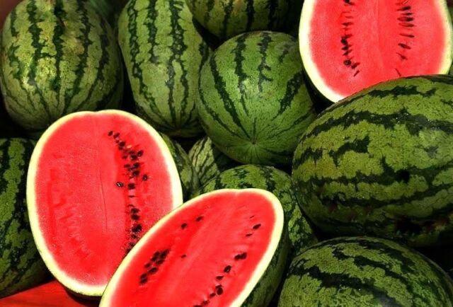 "20 HEIRLOOM WATERMELON SEEDS - WATERMELON ""JUBILEE"" NON-GMO, BIG PICNIC FAVORITE"