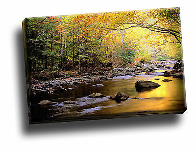Golden Waters, Great Smoky Mountains Canvas Framed Picture Wall Art