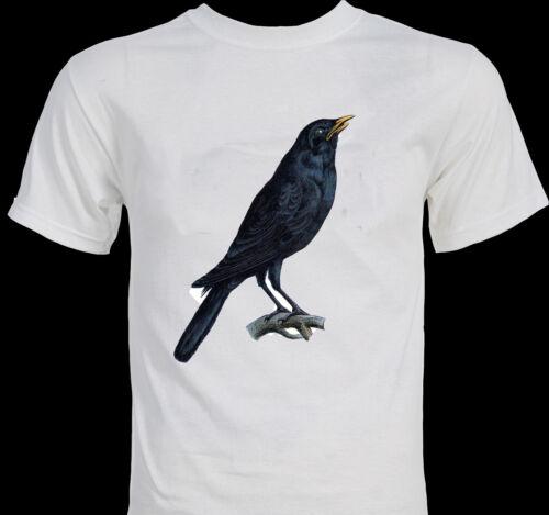 CROW -  Vintage 1800s image - ornithology - bird watcher's T-shirt