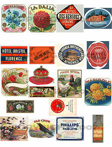 HUGE-collection-EPHEMERA-ViCtoRiAn-CiGaR-LABELS-WINGS-TAGS-LOTS-MORE-on-5-CDs