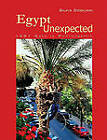 Egypt Unexpected: 1001 Days in Photographs by Silvia Dogliani (Paperback, 2008)