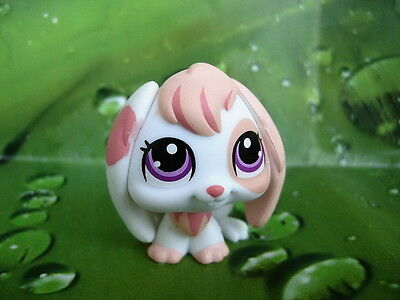 LITTLEST PET SHOP Special Edition Bunny #1304